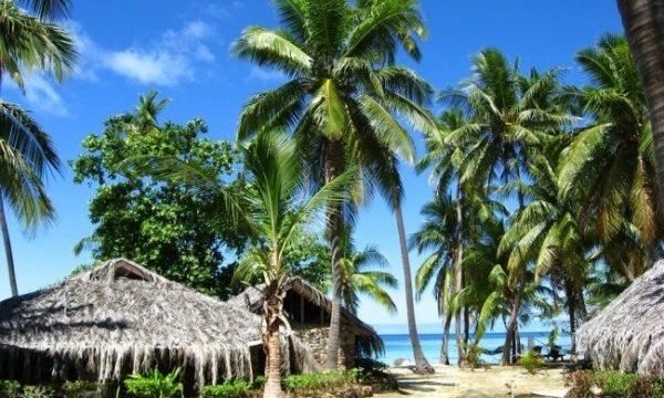 f595457d8f8d795af1a463fb512ab4db 1 600x360 - Красочный подводный мир и остров Тавеуни, Фиджи