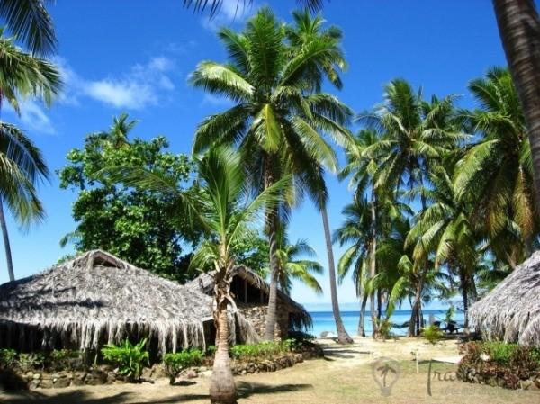 f595457d8f8d795af1a463fb512ab4db 1 - Красочный подводный мир и остров Тавеуни, Фиджи