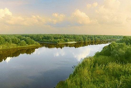 reka kuban 04 - Природные достопримечательности Краснодара