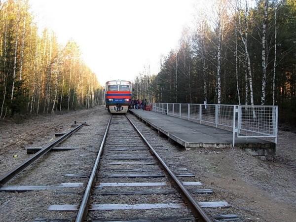 86a8276f3da71176bb78a443e7aeb02e - Гражданин Дании с просроченным паспортом и водительскими правами обнаружен в 100 метрах от польско-белорусской границы на железнодорожных путях