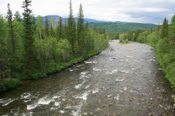 8c1a3dfb06f46f86243e08ad7f95f077 - Туристам удалось выбраться на отмель посередине реки, одного из группы унесло течением
