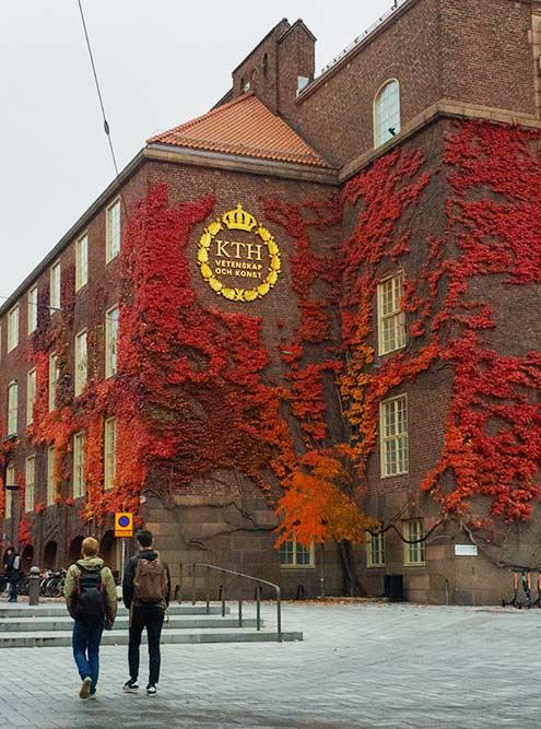 faq sweden  royal uni 1.fs5lmmx4w1rc - Швеция: что нужно знать перед поездкой
