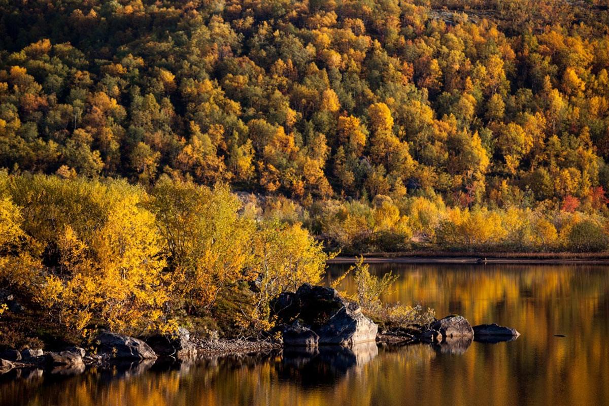 Fototur Kolsky 6 - Мурманск, Териберка, Хибины: как спланировать путешествие на Кольский полуостров?