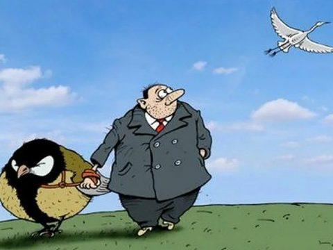 c156dc511a8c2f4f244a4362a90874e6 480x360 - Деньги или ваучер: что получат пассажиры за отмененные летние авиарейсы