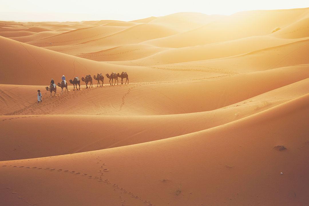 n 9 - Путешествуй не выходя из дома: Марокко