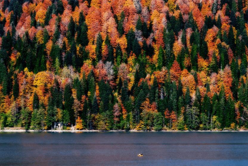 2016 09 18 19 15 18 - Под шелест листьев... Осенняя пора в России